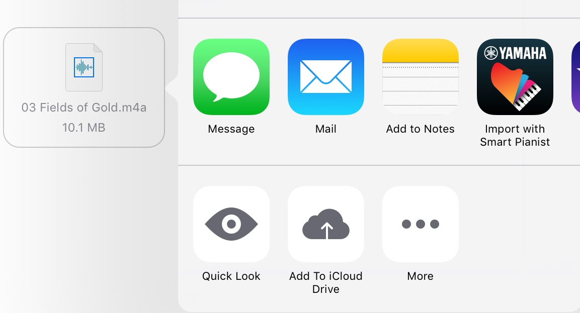 Screenshot of iCloud interface with an mp4 file name showing and options for opening the file.