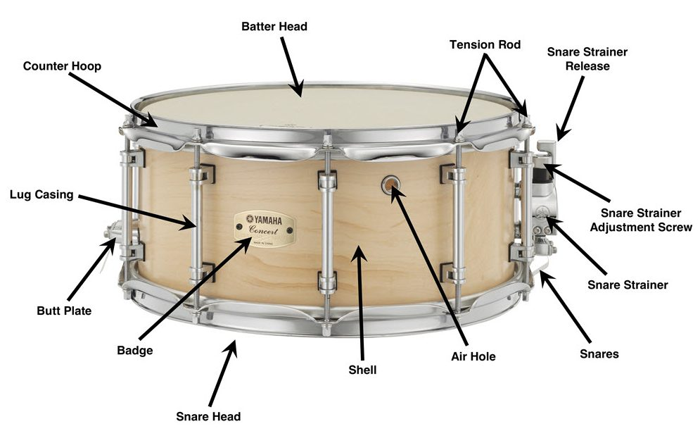 Snare drum image with annotations and arrows pointing out the specific parts/features.
