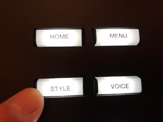 "A finger pressing a button marked ""Style""."