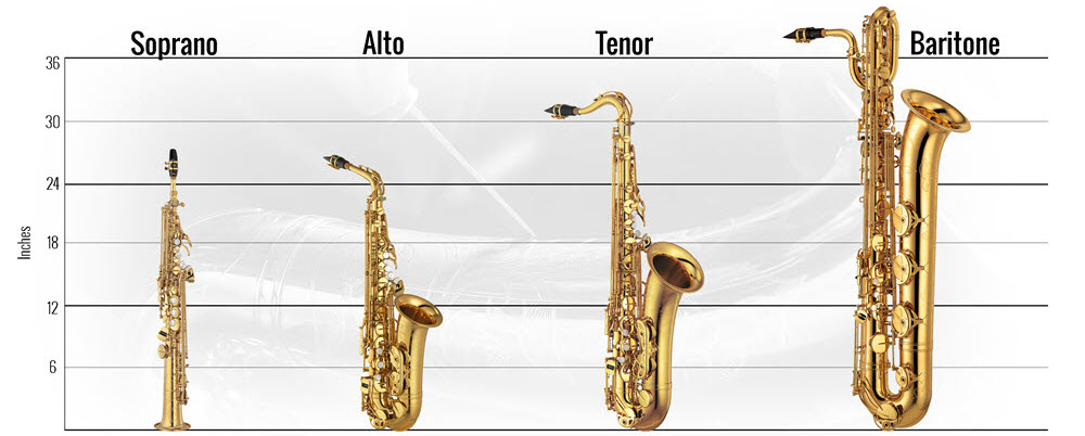Graphic representation of the relative sizes of saxophones.