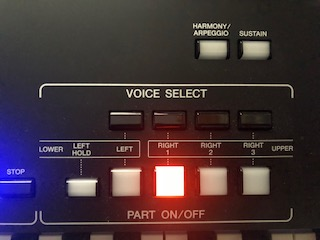 View of voice buttons.