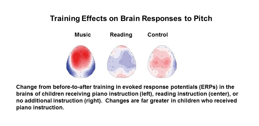Graphic depicting that the more musical training the more engaged the brain is for reading and control.