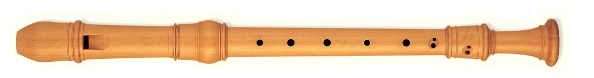 Wooden recorder.