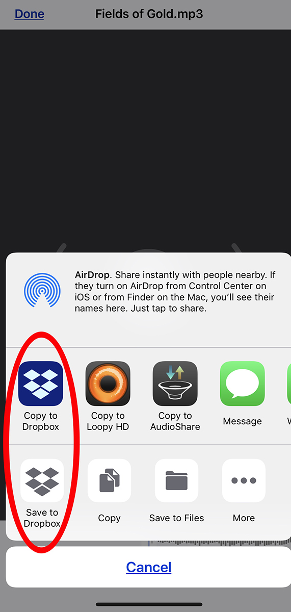 "An image displaying the ""copy to dropbox"" option."