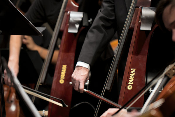 Closeup of the bowing hands of several musicians playing electric upright basses.