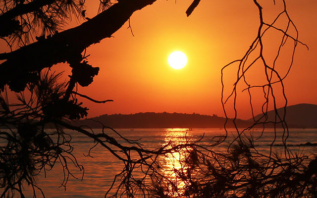 A sunset over water viewed through the silhouette of bare tree branches.