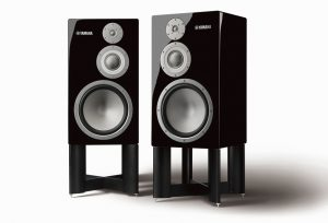Pair of floor speakers on stands.