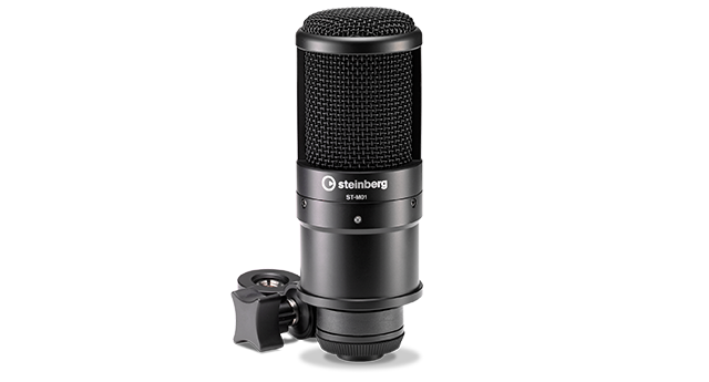 Large-diaphragm condenser microphone.