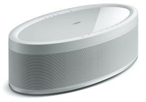 White, oval-shapped speaker.