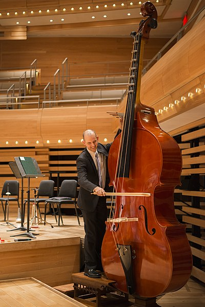Musician playing an octobass in an empty concert hall.