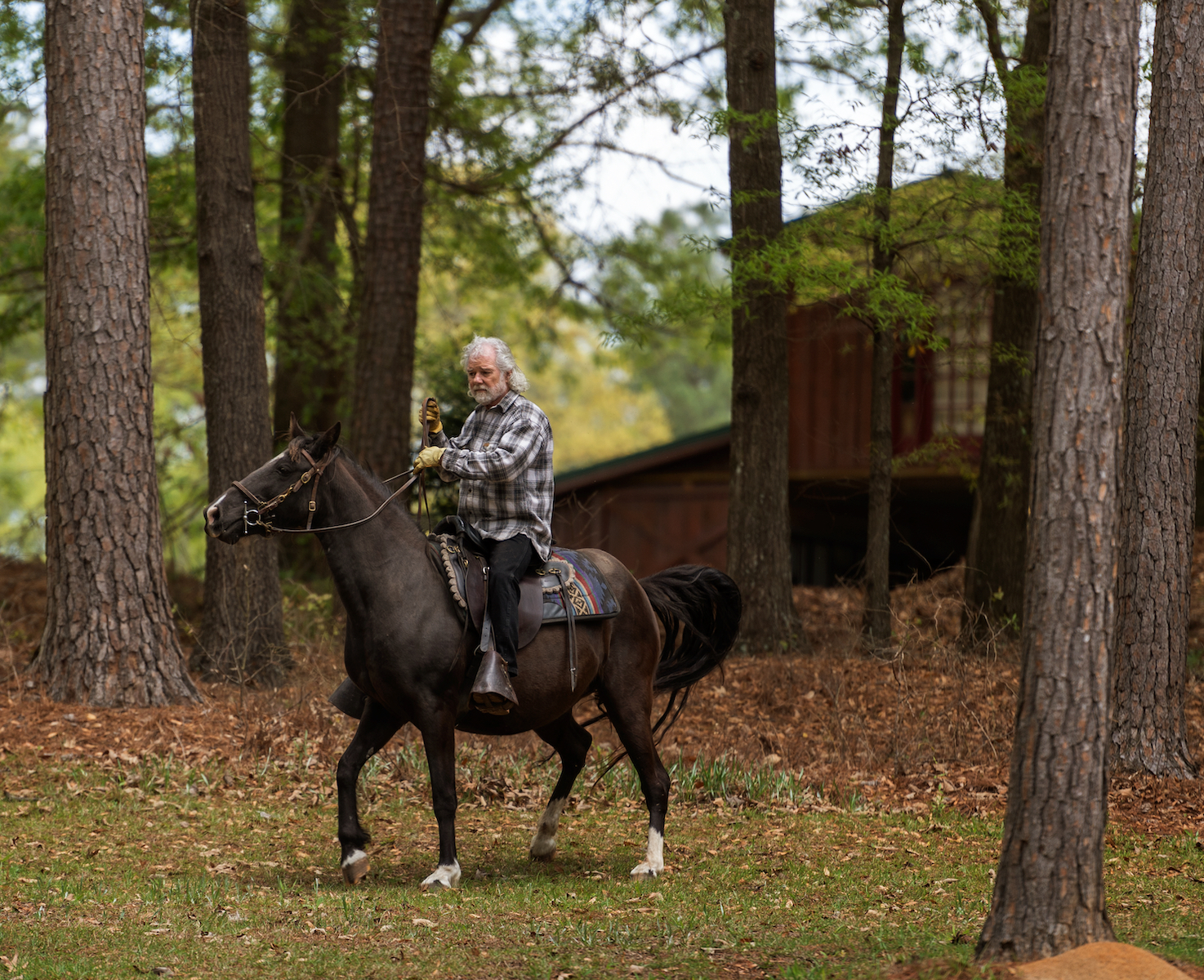 Chuck Leavell riding horse through wooded area.