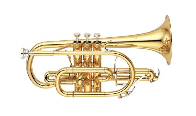Modern cornet seen in profile.