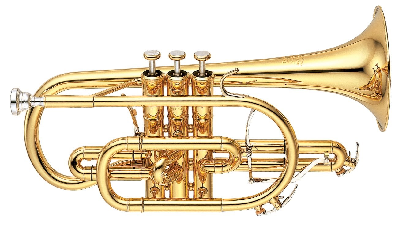 Close-up of modern cornet seen in profile.