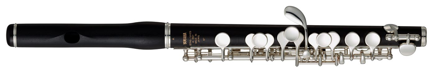 Small flutelike instrument with black finish and sliver keys.