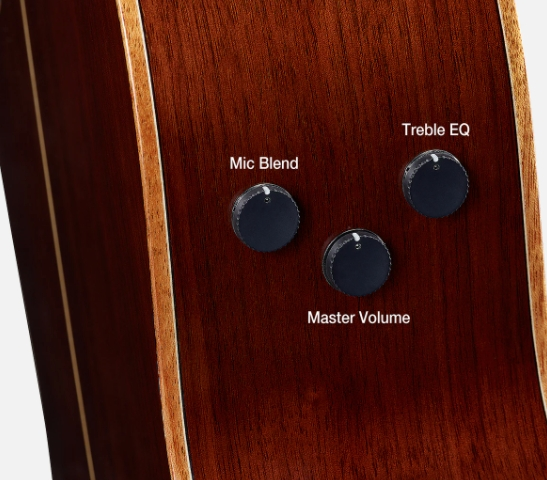 Closeup of knobs on side of body of acoustic guitar.