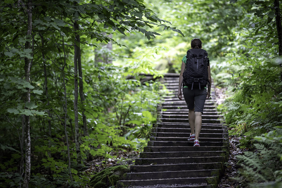 View from behind of someone climbing stone stairs wearing a backpack through a dense green forest towards sunlit area.