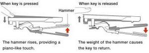 Yamaha GH3 keyboard action mechanism.